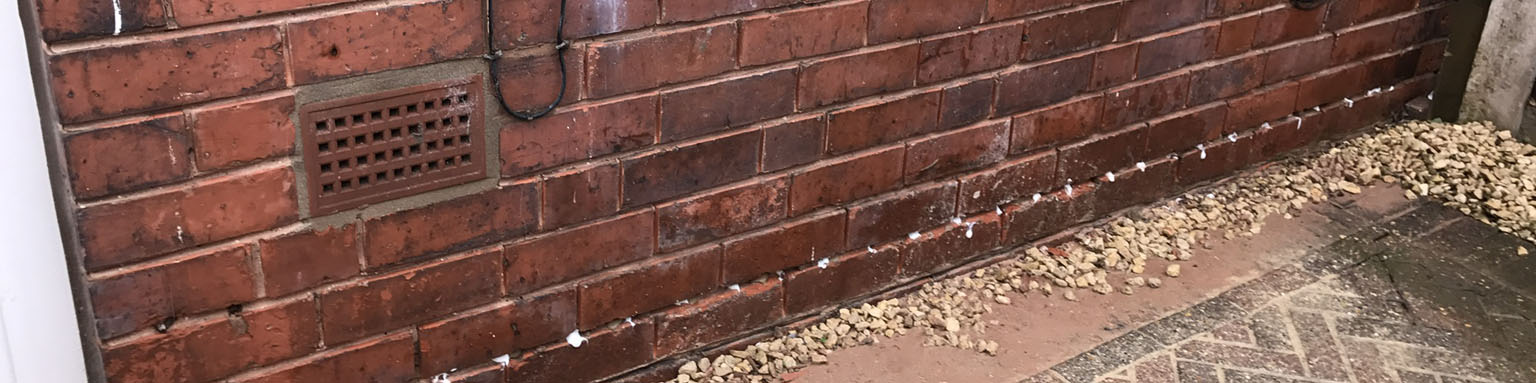 Slideshow banner image for Damp Proofing and Timber Treatments